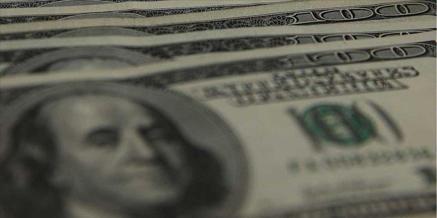 Merkez Bankası rezervleri 101 milyar 852 milyon dolara yükseldi