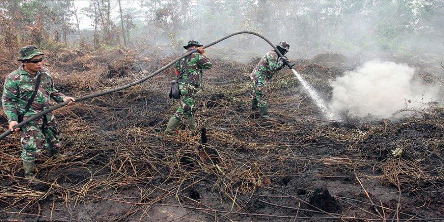 Orman yangınlarıyla ilgili 185 kişi gözaltına alındı
