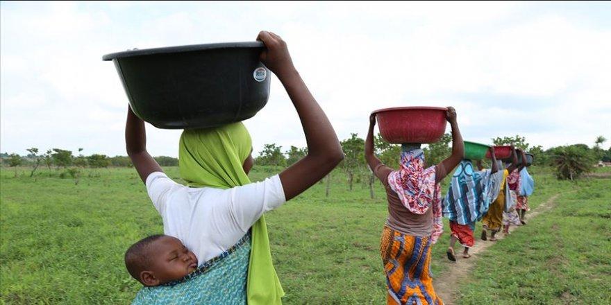 Nijeryalı kadınlar kafalarında yük taşıyarak para kazanıyor