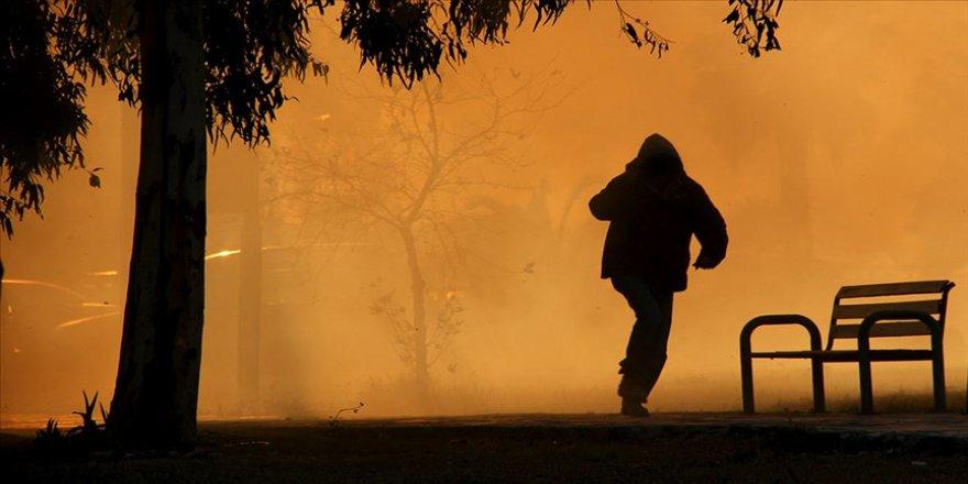 Pendik'deki orman yangınına ilişkin bir şüpheli gözaltında