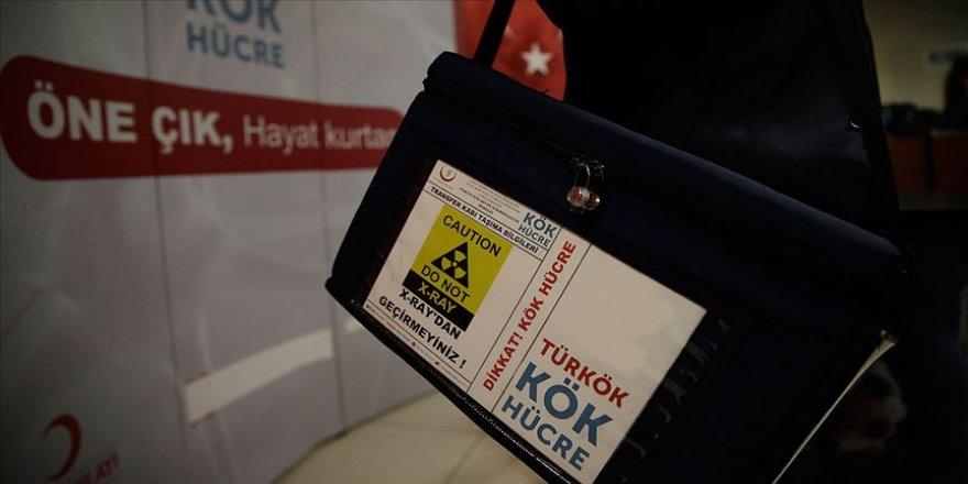 Türkiye ilik naklinde Avrupa'da ilk 5'te'