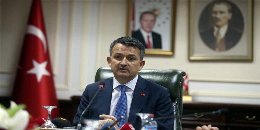 Bakan Pakdemirli: Ağustos itibarıyla yükümlülerle 1 milyon 160 bin fidan dikimi yapıldı