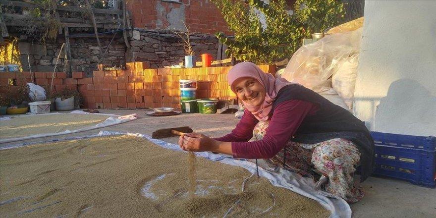 Köylü kadınların geleneksel 'kuskus' mesaisi başladı
