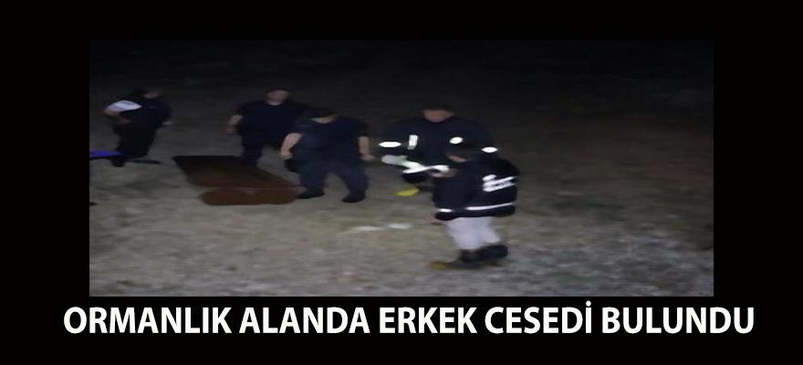 GEBZE'DE ORMANLIK ALANDA ERKEK CESEDİ BULUNDU
