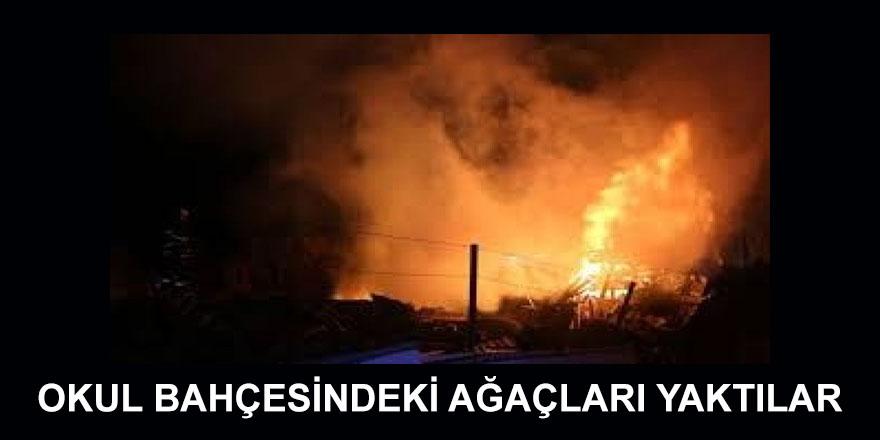 İlköğretim Okulu bahçesinde yer alan ağaçlar ateşe verildi