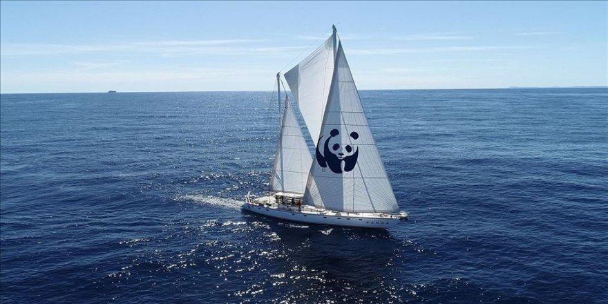 'Blue Panda' denizlerdeki plastik kirliliğine dikkati çekiyor
