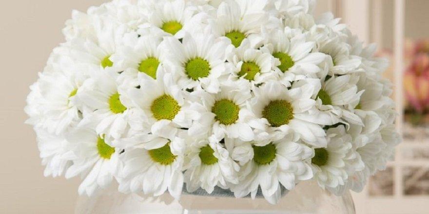Çiçek siparişi verirken nelere dikkat edilmeli?