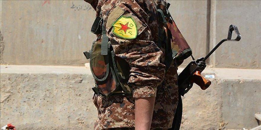 Terör örgütü YPG/PKK'da operasyon paniği