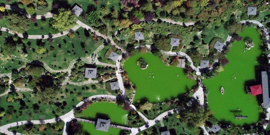 'Bu park, Japonya'daymış hissi uyandırıyor'