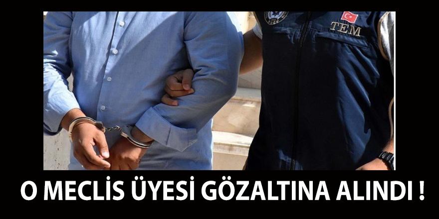 Saadet Partisi meclis üyesi , gözaltına alındı