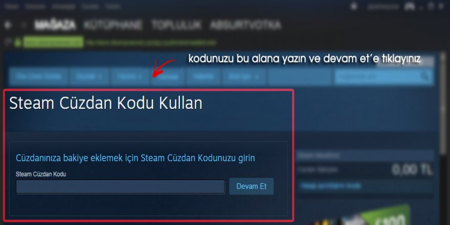 Steam Cüzdan Kodu Nedir ve Ne İşe Yarar?