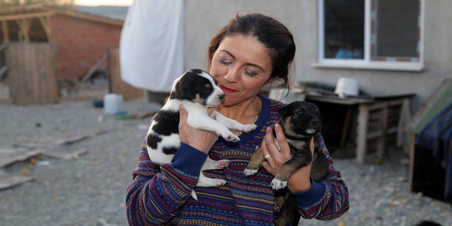 Köpeklerin mutlu olduğu köy