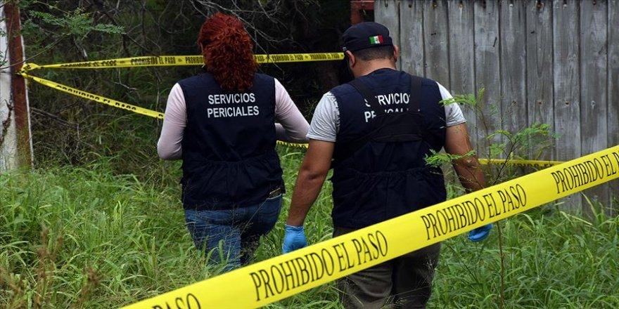 Meksikalılara göre suç örgütleri hükümetten daha güçlü
