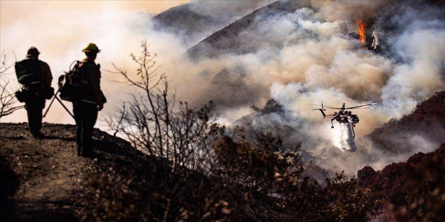 California'da orman yangınları 200 bin kişiyi evinden etti