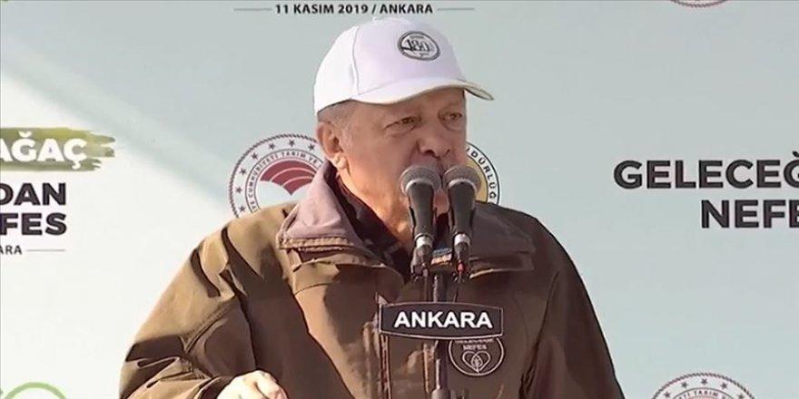 Erdoğan: Orman varlığımızı 17 yılda 22,6 milyon hektara çıkardık
