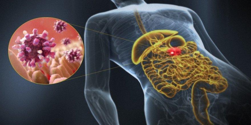 Antibiyotik kullanımında kanlı ishal görülebilir