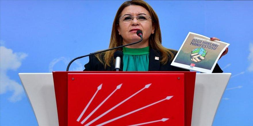 CHP'den 'Doğa Hakları Manifestosu'
