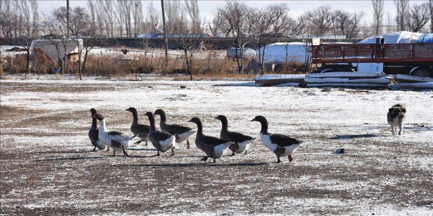 Doğu'daki 6 ilde aralıklı kar yağışı bekleniyor