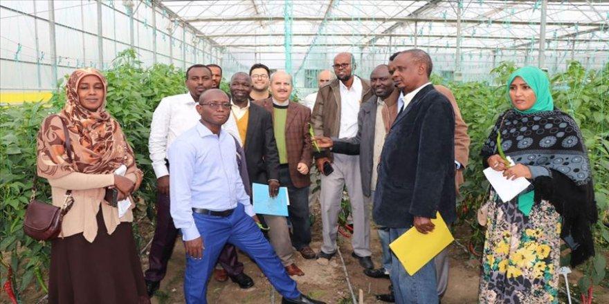 TİKA'dan Afrikalı tarım uzmanlarına eğitim desteği