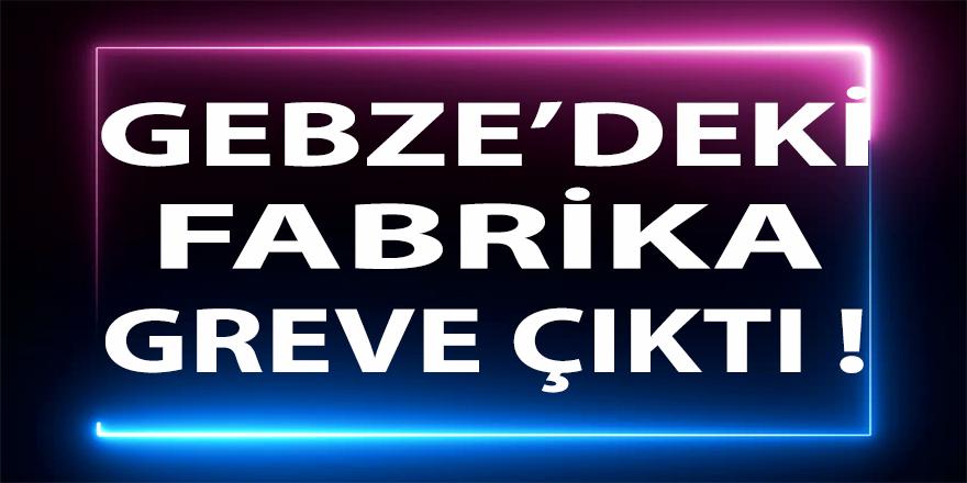 Gebze'deki Dev Fabrika Greve Çıktı !
