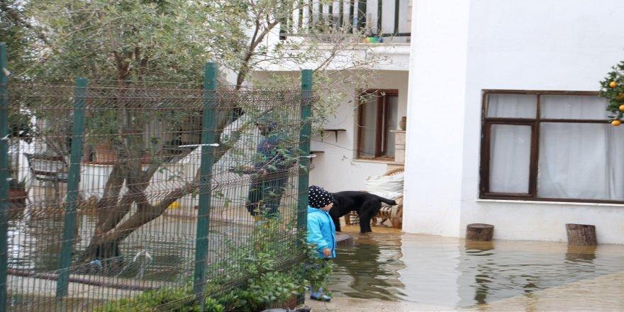 Antalya'da Acısu deresinin taşması sonucu bazı evleri su bastı