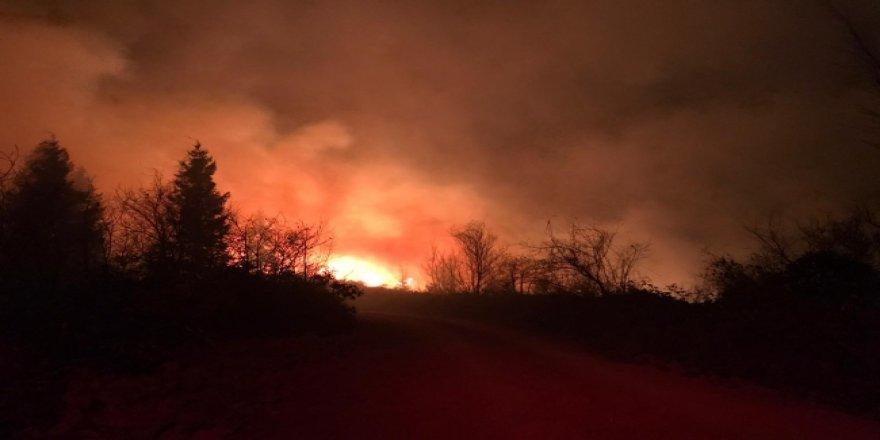 Karadeniz'deki orman yangınlarını PKK üstlendi!