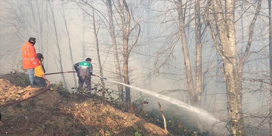 Karadeniz'de iki günde 150 noktada örtü ve orman yangını çıktı