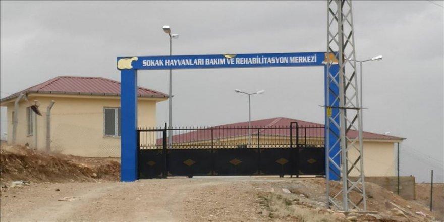 HDP'li belediyenin hayvan barınağında havan mermisi bulundu