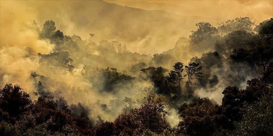 Orman yangınlarında yeni uçaklar devrede olacak