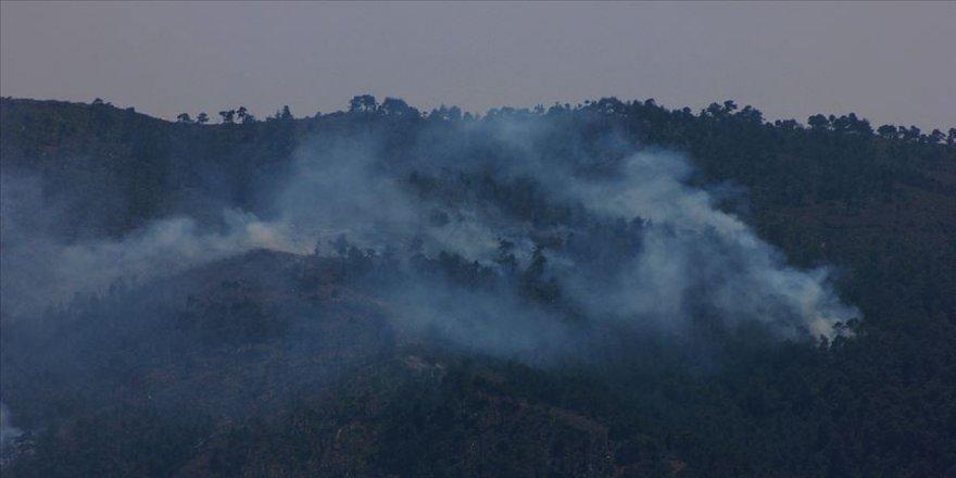Terör örgütü PKK/KCK'nın 'yangın' yalanı çürütüldü