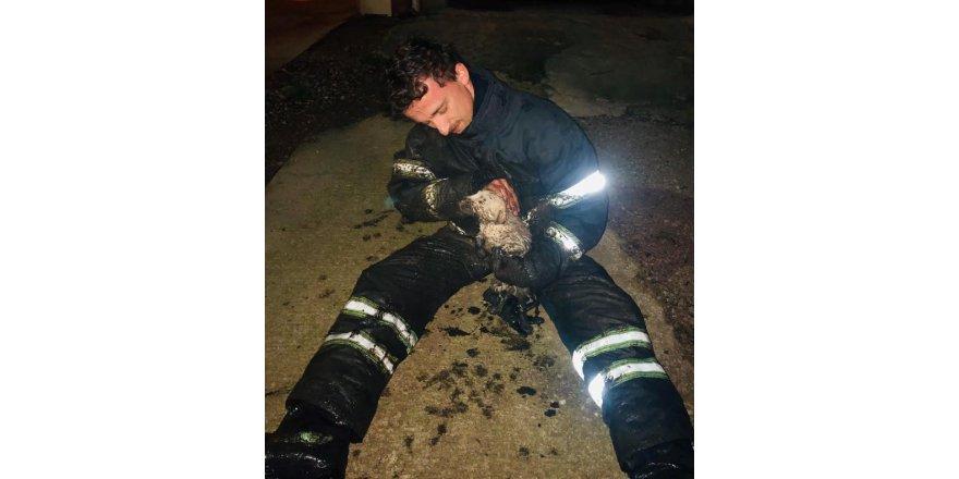 Yağmur kanalına sıkışan köpeği, itfaiye kurtardı