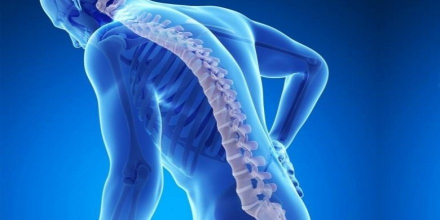 Kemik erimesi erkekleri de etkiliyor ! Kas erimesi ortaya çıkmadan önlenmeli