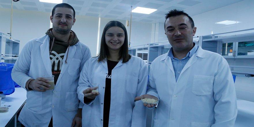 Türk bilim insanları gıda ve arıcılık sektörü için 'yerli enzim' üretti