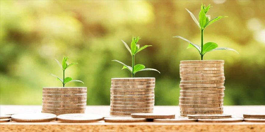 BES önemli bir yatırım aracı haline geliyor