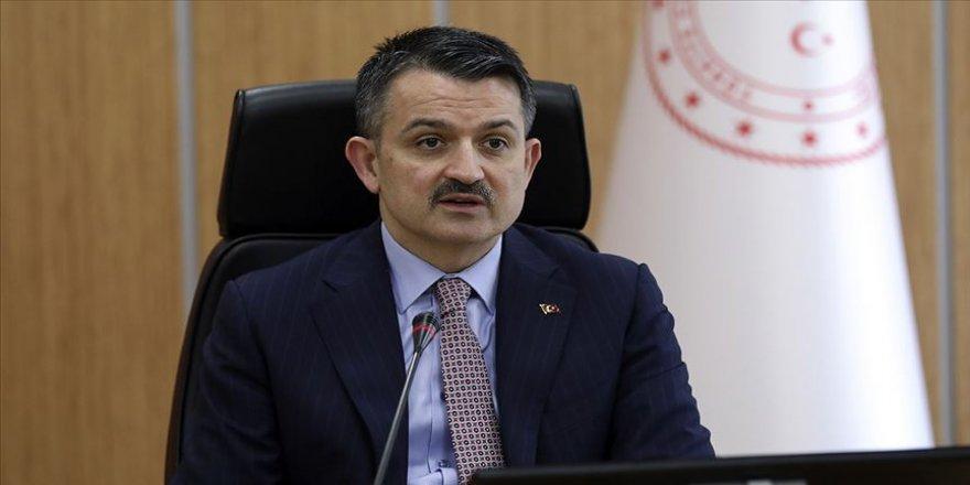 Tarım ve Orman Bakanı Pakdemirli: Ülke çapında tüm at yarışları geçici olarak ertelenmiştir