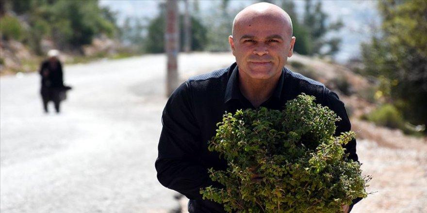 Türkiye'nin zengin florasından 250 çeşit sabun üretiyor
