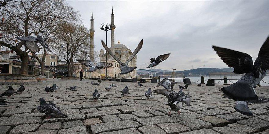 İstanbul'un simge meydanlarının tek sakini güvercinler