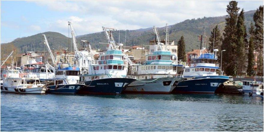 Balıkçılar koronavirüs nedeniyle av sezonunu erken kapattı