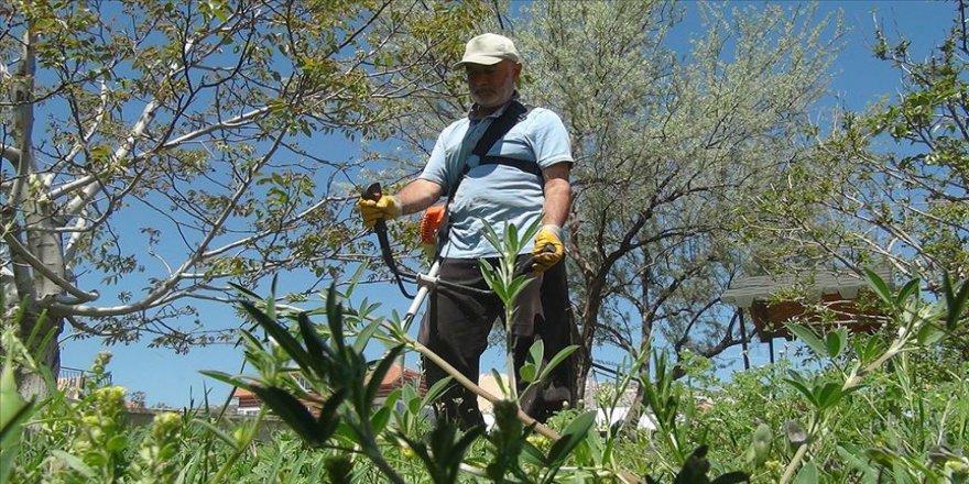 Emeklinin duyarlılığı çevre temizliği seferberliğine dönüştü