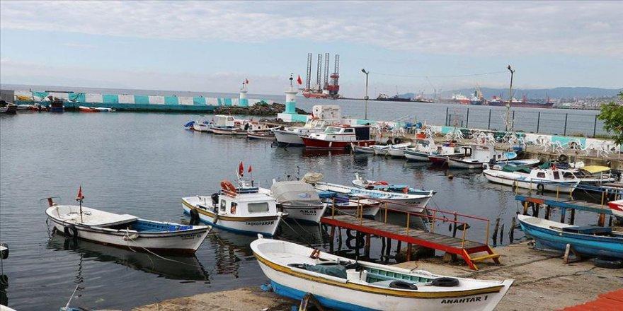 Kısıtlamanın kaldırılmasının ardından tekne balıkçılarının yüzü 'istavrit' ile güldü