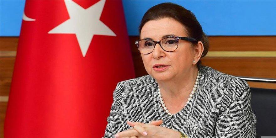 Ticaret Bakanı Pekcan: Habur ve Gürbulak kapılarını bu hafta açıyoruz