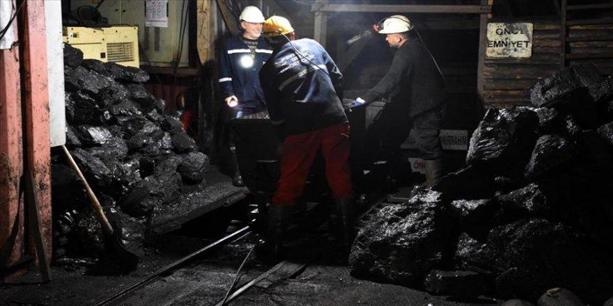 'Kara elmas'ın satışından 5 ayda 74 milyon lira gelir