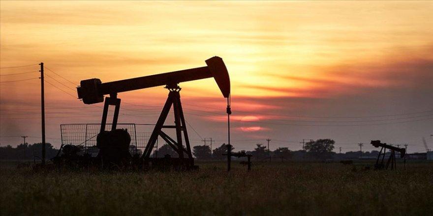 ABD petrol üretimi ve tüketiminde yine lider