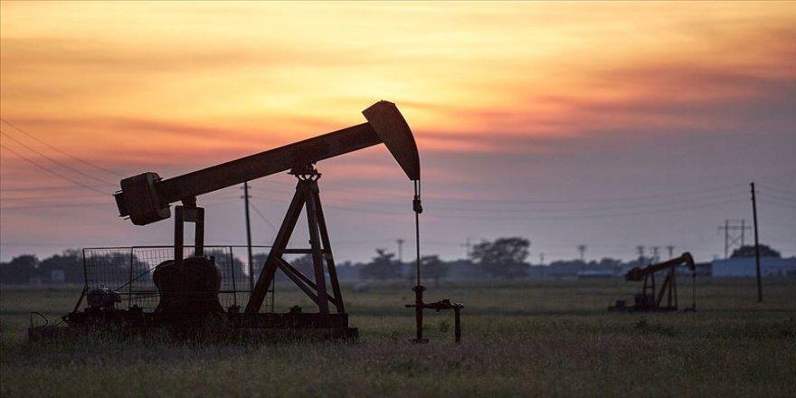 Brent petrolün varili uluslararası piyasalarda 41,98 dolardan işlem görüyor.