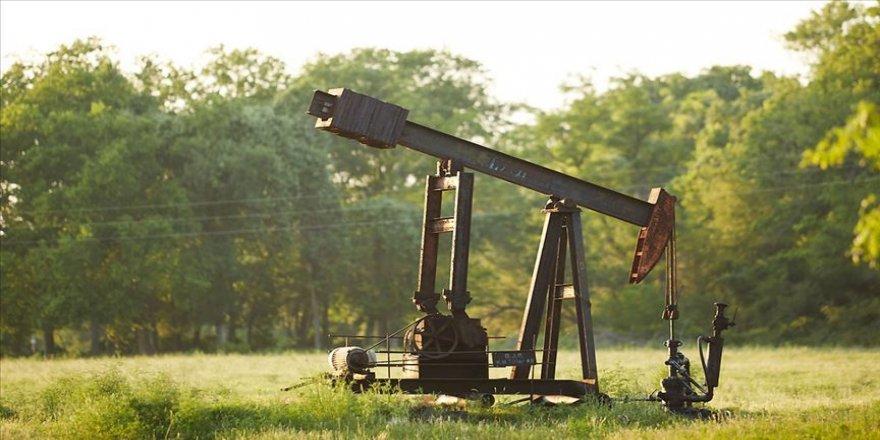 Brent petrolün varili 42,70 dolar