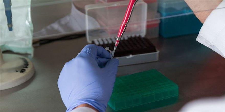 Kovid-19'lu çocuktan alınan kök hücreler hastalık bulaştırılmadan kardeşine nakledildi