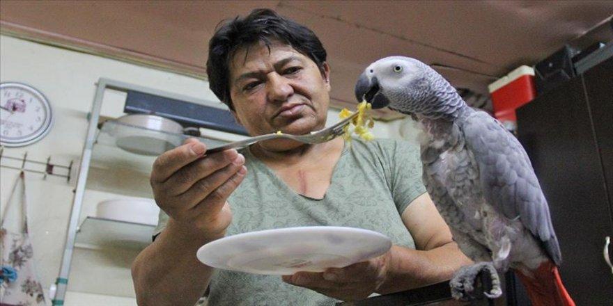 """İhtiyaç kredisiyle satın aldığı papağan """"Sabri""""ye 11 yıldır gözü gibi bakıyor"""