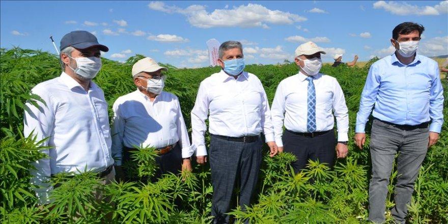 TAGEM Genel Müdürü Kayacan: 72 yeni tohum çeşidini hizmete sunduk
