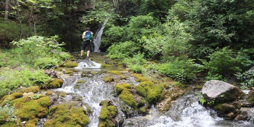 Amanosların 'saklı cenneti' Yeşildere Vadisi doğaseverlerin ilgisini çekiyor
