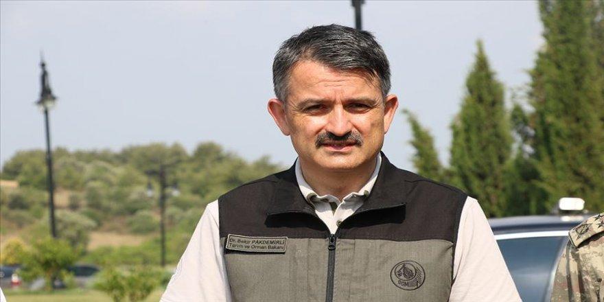 Tarım ve Orman Bakanı Pakdemirli: Heybeliada'daki yangınla alakalı 3 gözaltı var